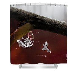 Snow Crystal In Water Drop Shower Curtain by Dan Friend