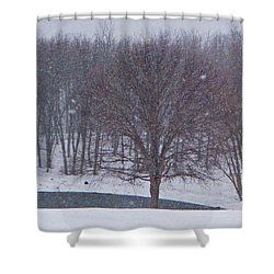 Snow Day Shower Curtain by Chris Berry
