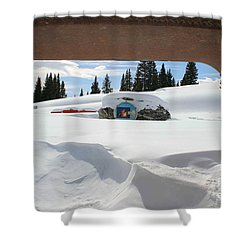 Snow Daze Shower Curtain by Fiona Kennard