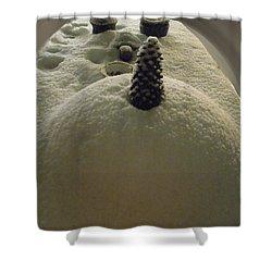 Snow Fall Serie December 2012 Shower Curtain by Colette V Hera  Guggenheim