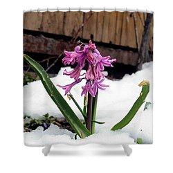 Snow Flower Shower Curtain by Fiona Kennard