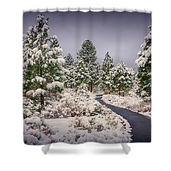 Shower Curtain featuring the photograph Snow In Galena by Janis Knight