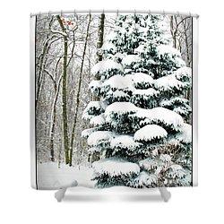 Snow In Ohio Shower Curtain by Joan  Minchak