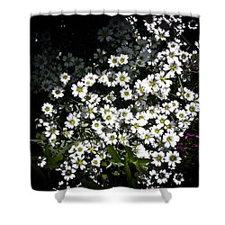 Shower Curtain featuring the photograph Snow In Summer by Joann Copeland-Paul