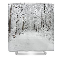 Snow In The Park Shower Curtain by Raymond Salani III