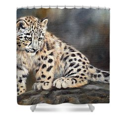 Snow Leopard Cub Shower Curtain