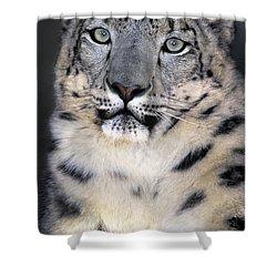 Snow Leopard Portrait Endangered Species Wildlife Rescue Shower Curtain