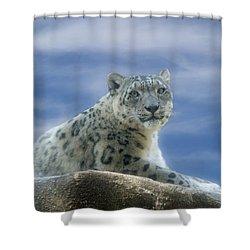 Snow Leopard Shower Curtain by Sandy Keeton