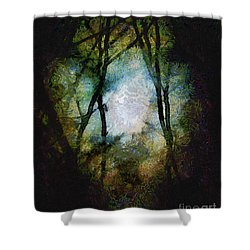 Snow Moon Embrace Shower Curtain by RC deWinter