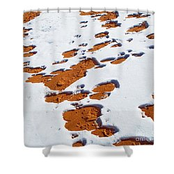 Snow On Dunes Shower Curtain