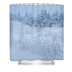 Snow On New Years Eve Shower Curtain