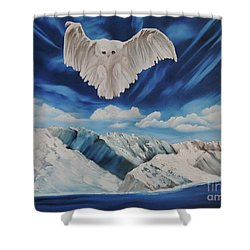 Snow Owl Shower Curtain by Dianna Lewis