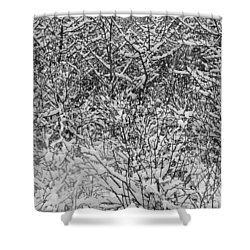 Shower Curtain featuring the photograph Snow Patterns by Mary Bedy