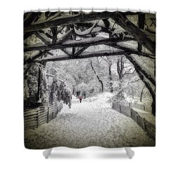Snow Scene In Central Park Shower Curtain