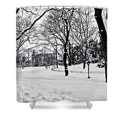 Snow Scene  Shower Curtain