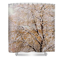 Shower Curtain featuring the photograph Snow Tree  by Kathy Bassett