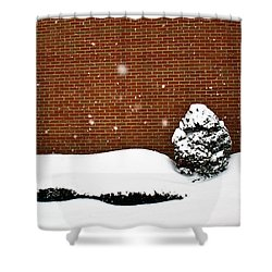 Snow Wall Shower Curtain by Tim Buisman