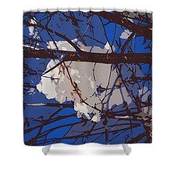 Snowball Shower Curtain by Carol Lynch