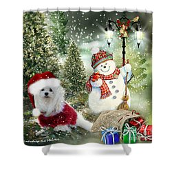 Snowdrop And The Snowman Shower Curtain