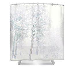 Snowed In Shower Curtain by Tara Turner