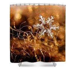 Snowflake On Brown Shower Curtain