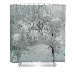 Snowland Shower Curtain by Kume Bryant
