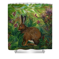 Snowshoe Hare Shower Curtain