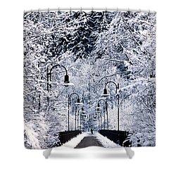 Snowy Bridge Shower Curtain