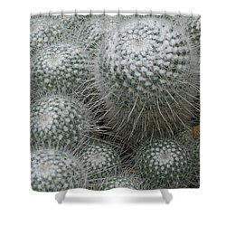 Snowy Cactus  Shower Curtain