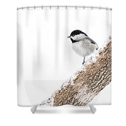 Snowy Chickadee Shower Curtain