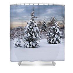 Snowy Dawn Shower Curtain by Deborah  Bowie
