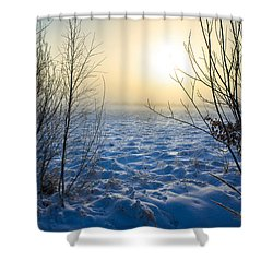 Snowy Dream Shower Curtain
