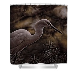 Shower Curtain featuring the photograph Snowy Egret 002 by Travis Burgess