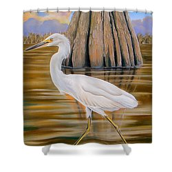 Shower Curtain featuring the painting Snowy Egret And Cypress Tree by Phyllis Beiser