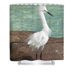 Snowy Egret Shower Curtain by DejaVu Designs