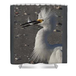 Snowy Egret Fishing Shower Curtain