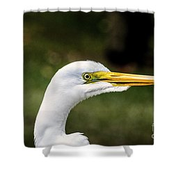 Snowy Egret Profile Shower Curtain