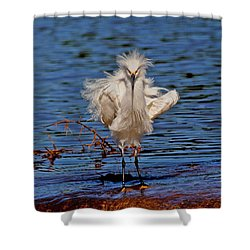 Snowy Egret With Yellow Feet Shower Curtain by Tom Janca