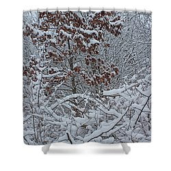 Shower Curtain featuring the photograph Snowy Forest 12 by Mary Bedy