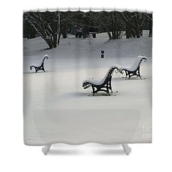 Snowy Landscape Shower Curtain