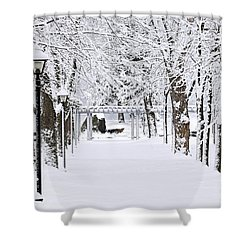 Snowy Lane In Winter Park Shower Curtain by Elena Elisseeva