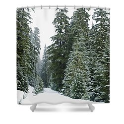 Snowy Mount Hood Forest Shower Curtain by Charmian Vistaunet