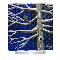 Snowy Night Shower Curtain by Jaime Haney