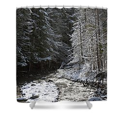 Snowy Oregon Stream Shower Curtain by Peter French