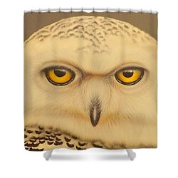 Shower Curtain featuring the painting Snowy Owl by Darren Robinson