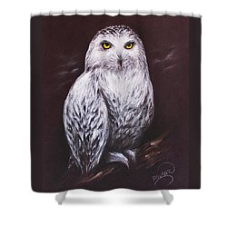 Snowy Owl In The Night Shower Curtain