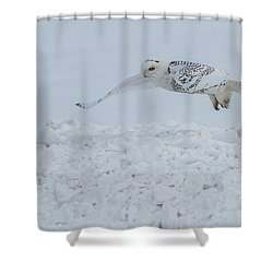 Shower Curtain featuring the photograph Snowy Owl #1/3 by Patti Deters