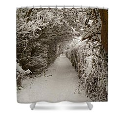 Shower Curtain featuring the photograph Snowy Path by Vicki Spindler