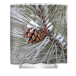 Snowy Pine Shower Curtain by Penny Meyers