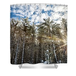 Snowy Pines With Sunflair Shower Curtain by Brian Boudreau